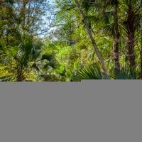 Wekiva Springs State Park, Florida